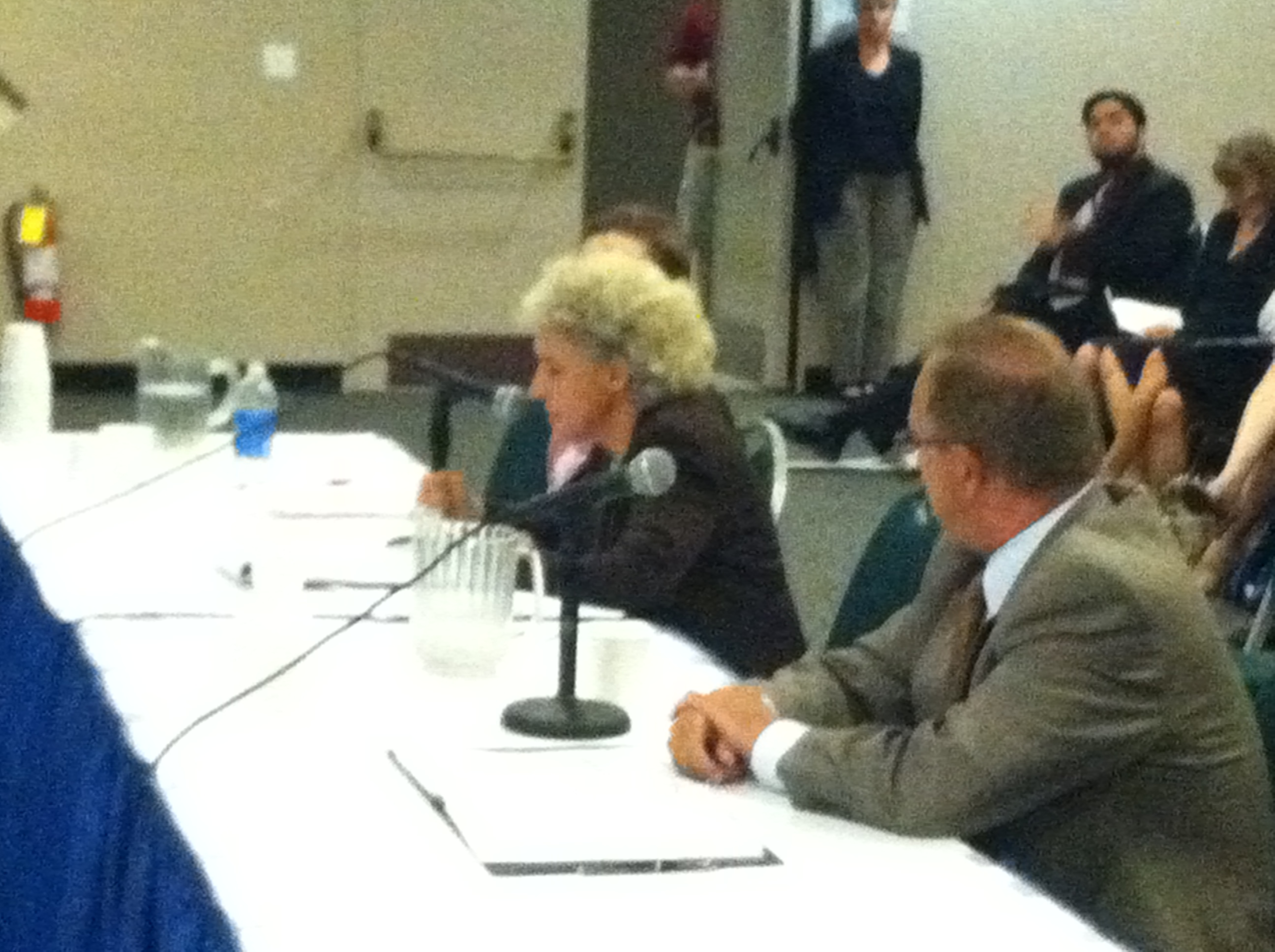 Testimonies of Karen Scharff and Kate Breslin at Today's NY Education Reform Commission Hearing